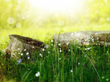Езотерика – първи стъпки с 5 книги