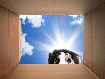 Отвъд кутията – част I