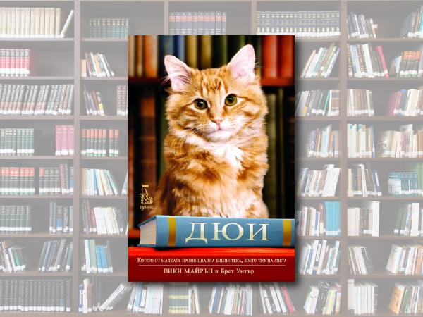 Дюи и други котки, които живеят в книжарница